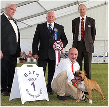 Group 1 Houghton, CH BELTERSTAFFS GINGER JOE, (SBT) D.